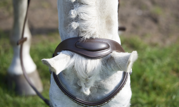 GFS Simplicity Bridle with Rubber Reins