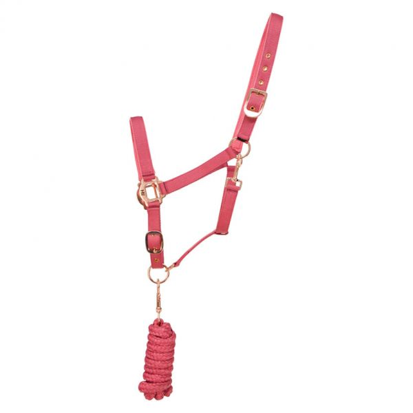 Hy Rose Gold Head Collar and Lead Rope