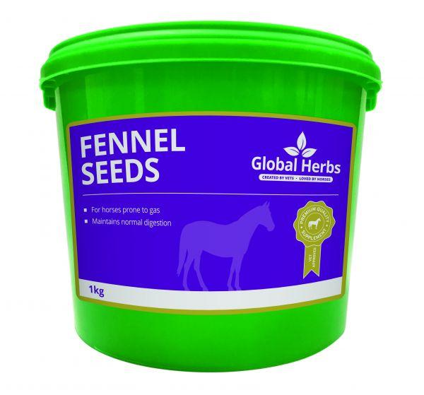 Global Herbs Fennel Seeds
