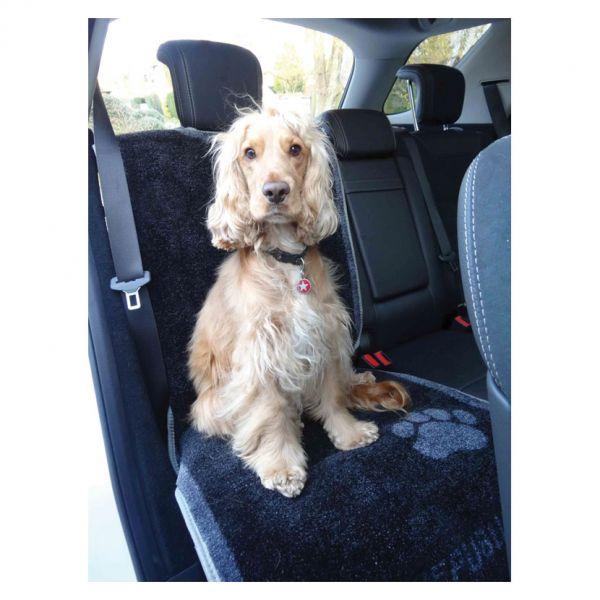 Pet Rebellion Car Seat Carpet Colour: One Colour / Size: OS