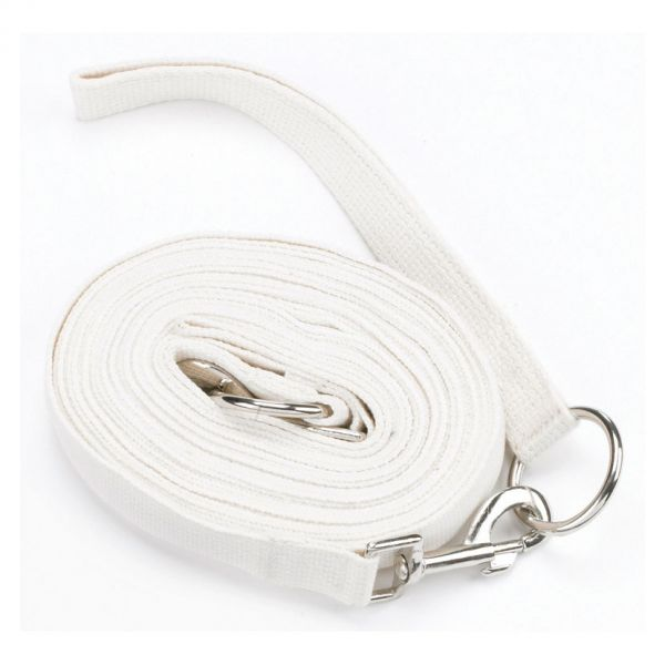 Hy Draw Reins With Clips Colour: White