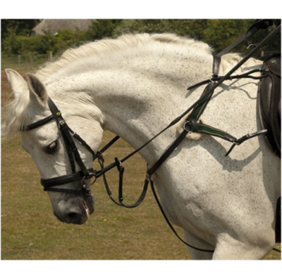 Shires Five Point Breastplate Colour: Brown / Size: Full