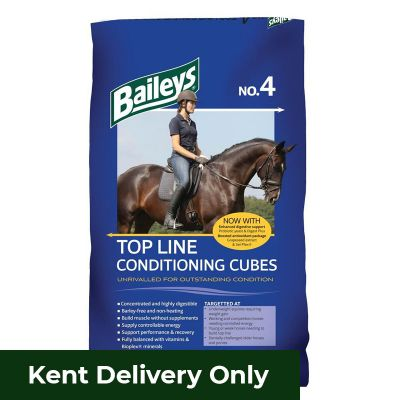 Baileys No.4 Top Line Conditioning Cubes