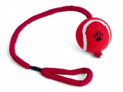 Petface Tennis Ball On A Rope