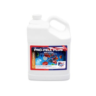 Equine America Propell Plus 5ltr Size: 5ltr