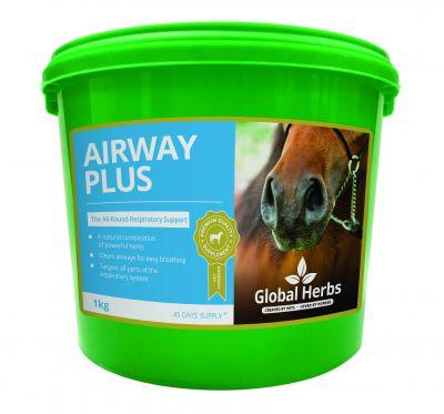 Global Herbs Airway Plus Powder Size: 1kg