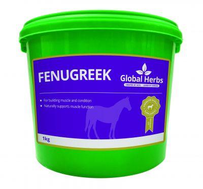 Global Herbs Fenugreek Seeds Size: 1kg