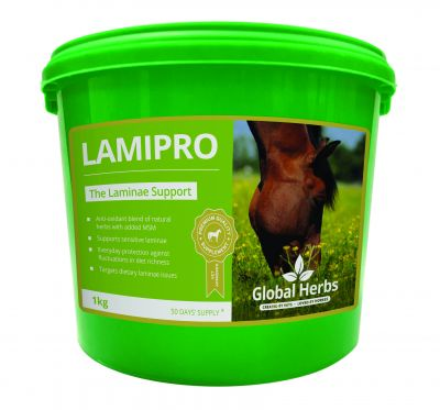Global Herbs LamiPro Supplement