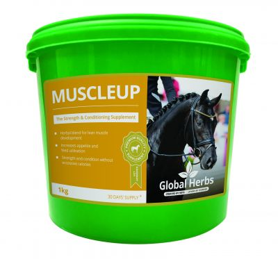 Global Herbs Muscle Up Size: 1kg