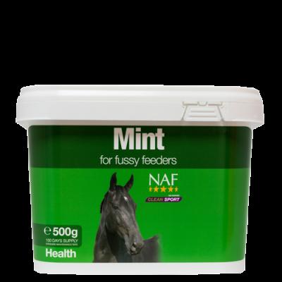 NAF Mint 500g Size: 500g