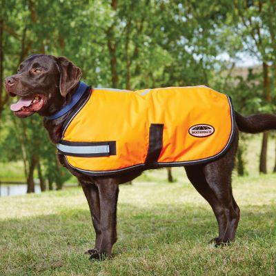 Weatherbeeta Reflective Parka 300D Dog Coat Orange