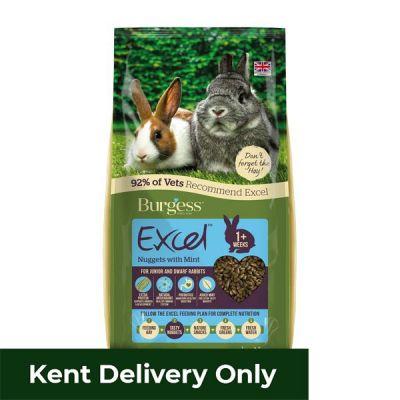 Burgess Excel Junior Dwarf Rabbit Nuggets with Mint 10kg