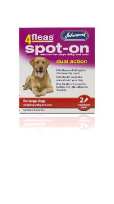 Johnsons 4fleas Spot-On large Dog
