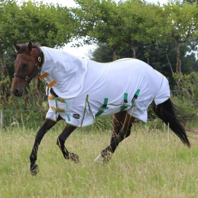 Gallop All in One Combo Fly Rug
