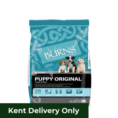 Burns Puppy Original Lamb 6kg