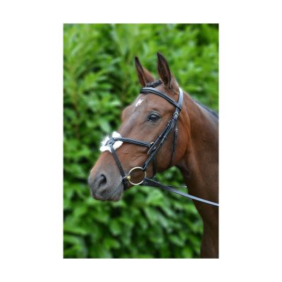Hy Mexican Bridle with Rubber Grip Reins
