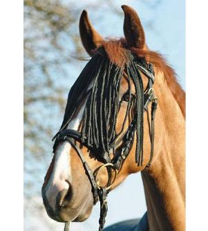 Fly Fringe Shetland Pony